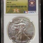 Silver Eagle Houston