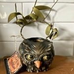 Bethany Lowe Halloween Owl
