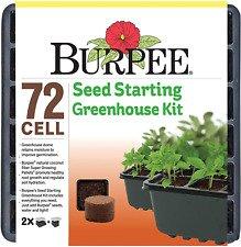 """""""burpee"""" seed"""