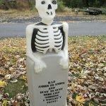 skeleton blow mold
